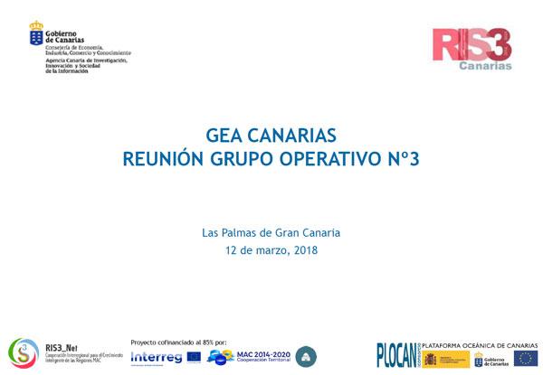 Primera reunión Grupo Operativo nº3 GEA