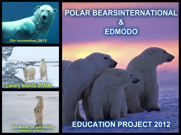 polar_bears_international_2012