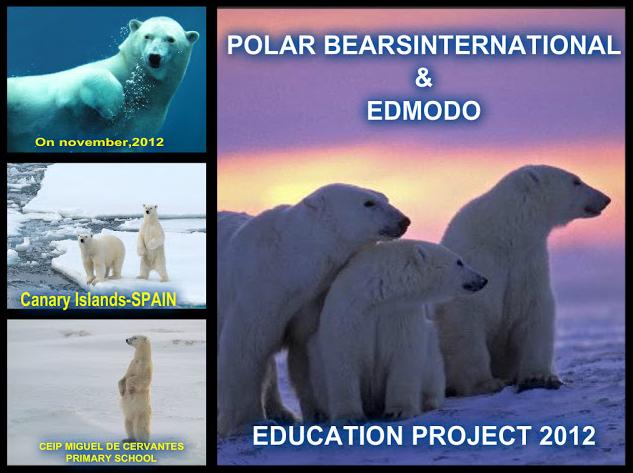 polar_bears_international_2012