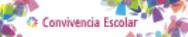 CONVIVENCIA MECyD