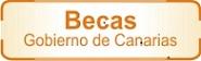 Becas, Ayudas. Canarias