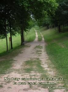 No hay camino para la paz, la paz es el camino