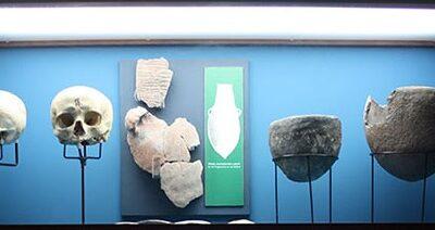 Aprendiendo con el patrimonio: proyecto expositivo del museo del Instituto de Canarias Cabrera Pinto