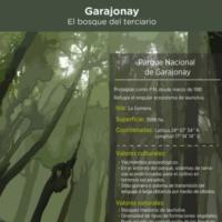Infografía: Garajonay, el bosque del terciario
