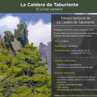 Infografía: La caldera de Taburiente, el pinar canario