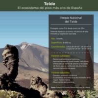 Infografía: Teide, el ecosistema del pico más alto de España
