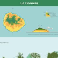 Infografía: Pisos de vegetación de La Gomera