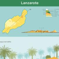 Infografía: Pisos de vegetación de Lanzarote