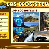 Los ecosistemas (Catedu)