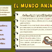 El mundo animal (Catedu)