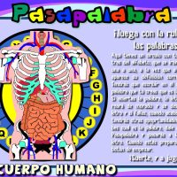 Proyecto Pasapalabra. El cuerpo humano