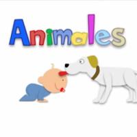 Animales (Niño de papel)