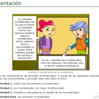 Animales invertebrados (ItFor)