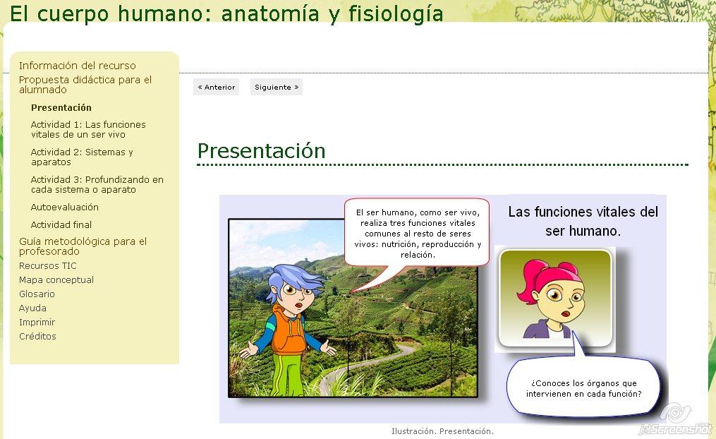 El cuerpo humano: anatomía y fisiología » Recursos educativos digitales
