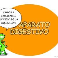 Aparato digestivo (Supersaber)