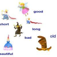 Twelve adjectives