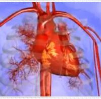 Corazón latiendo