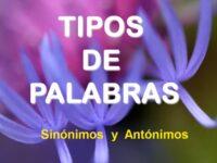 Sinónimos y Antónimos I