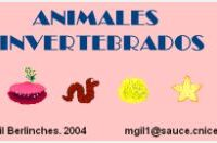 Animales invertebrados I