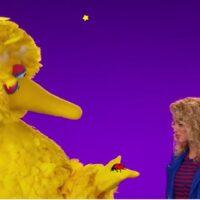 Muppets – Sesame Street