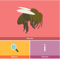 HTML5: Abeja Negra