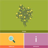 HTML5: Ahulaga