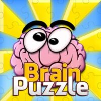 Brain puzzle pro