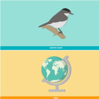 HTML5: Capirote canario