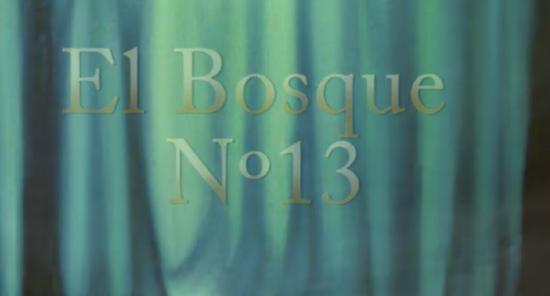 El bosque nº 13