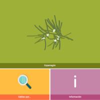 HTML5: Esparragón
