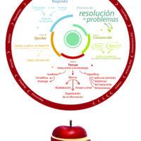 Fases y estrategias par la resolución de problemas
