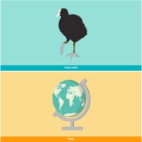 HTML5: Focha común