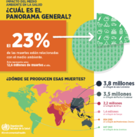 Impacto medio ambiente en la salud