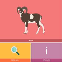 HTML5: Muflón