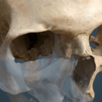 Arqueomanía: arqueología canaria