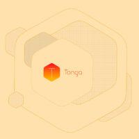 TongaApp. Aplicación para edición de imágenes vectoriales y bitmap