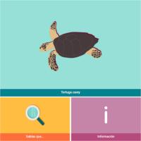 HTML5: Tortuga carey