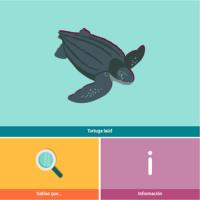 HTML5: Tortuga laúd