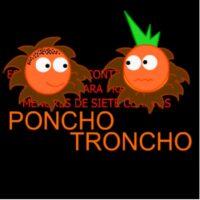 Las aventuras de Troncho y Poncho: Fracciones