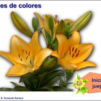 Seriaciones de colores