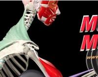 Músculos y Movimiento