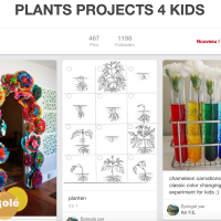 Plants projects 4 kids