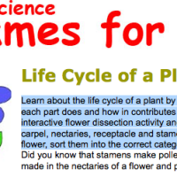 Life Cycle of  Plant games