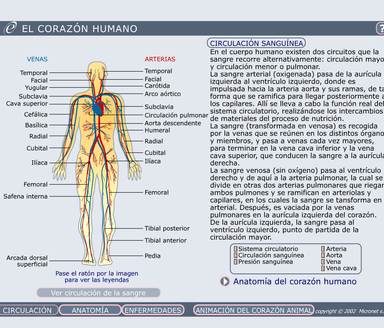 El corazon humano » Recursos educativos digitales