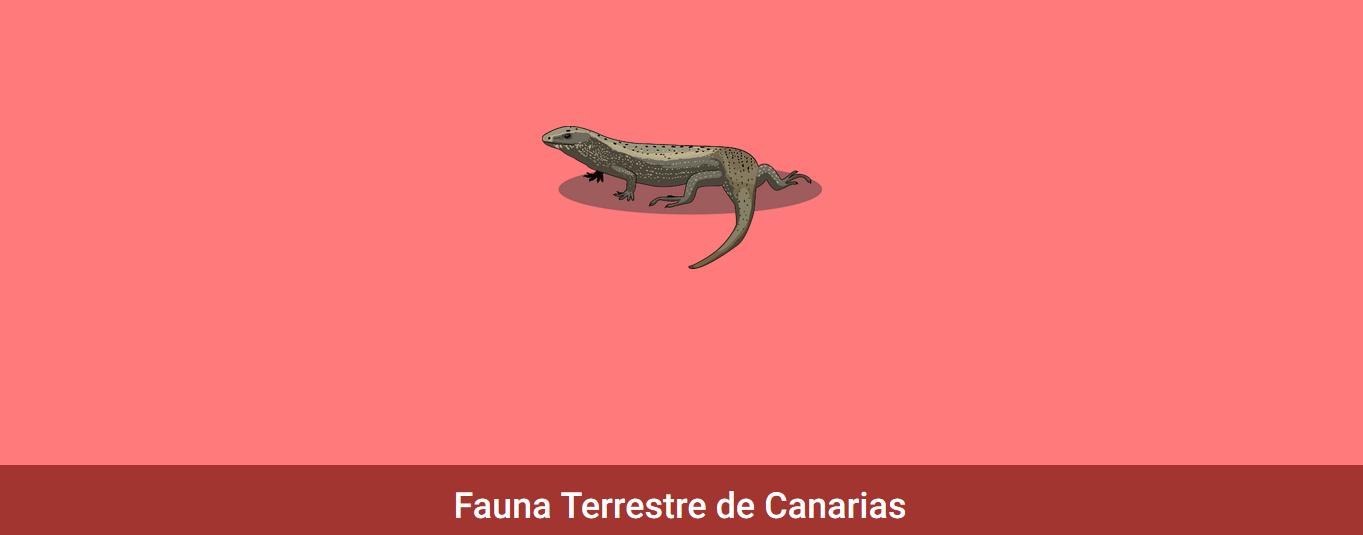 2.2. Fauna » Recursos educativos digitales