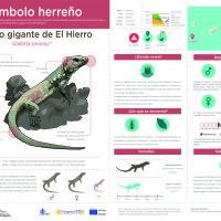 Infografía: Lagarto del Hierro