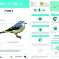 Infografía: Alpispa