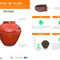 Infografía: Bernegal