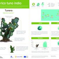Infografía: Tunera