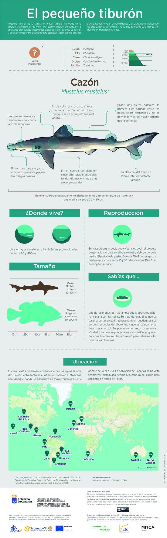 Infografía: Cazón » Recursos educativos digitales